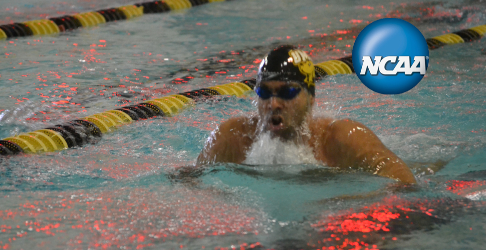 Hussein Opens NCAA Championships with the 200 IM