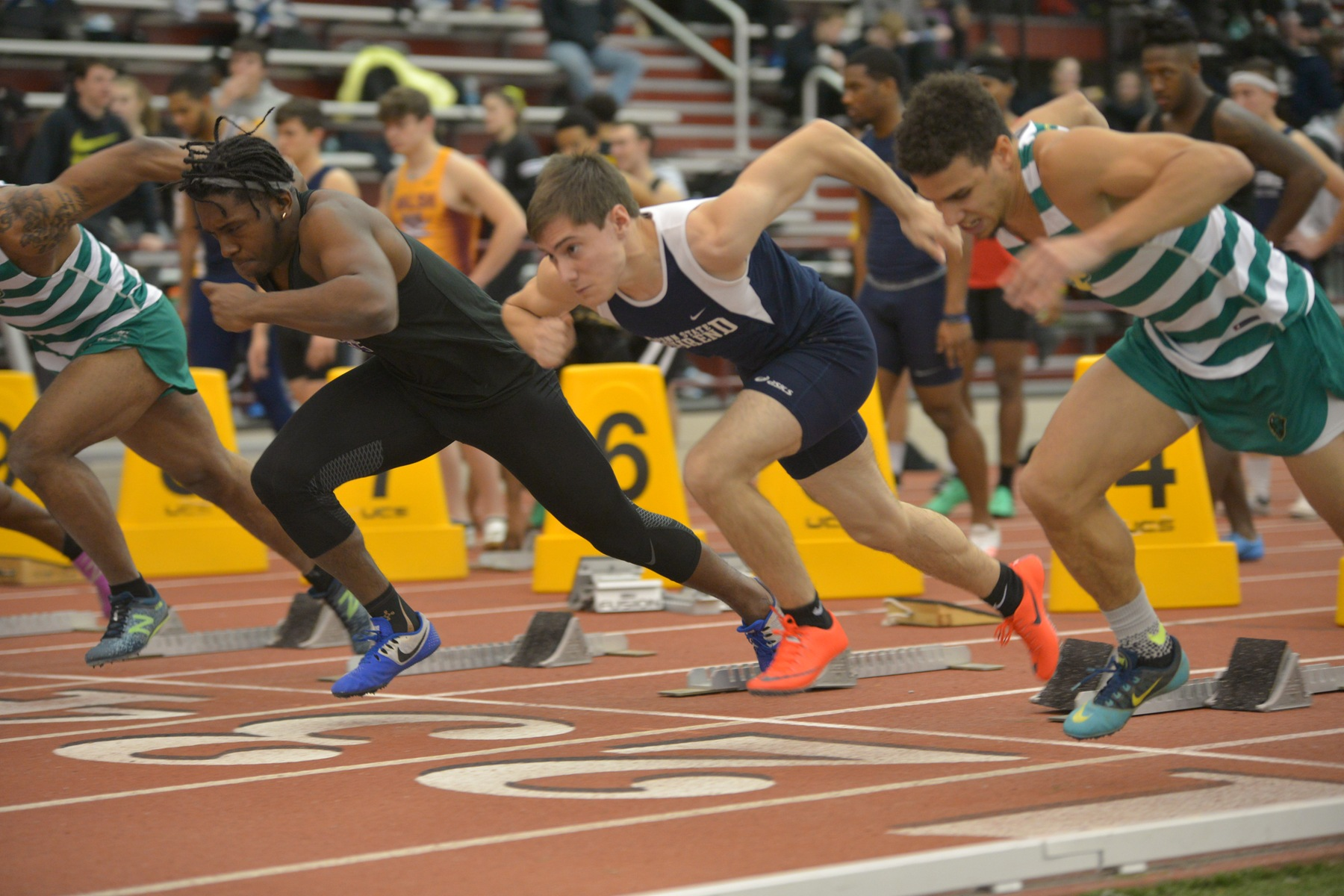Lions Finish Second at Carnegie Mellon