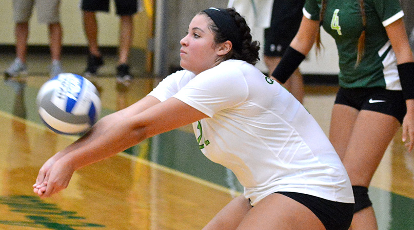 Volleyball Opens 2018 Season at Mount St. Joseph