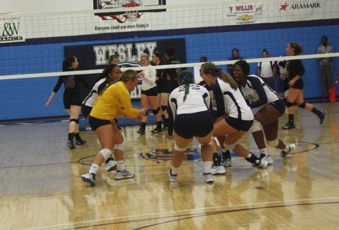 Volleyball Drops Home Opener to Goucher