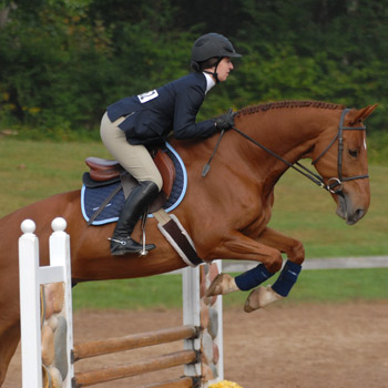 Riding Participates in Holiday Tournament of Champions Show