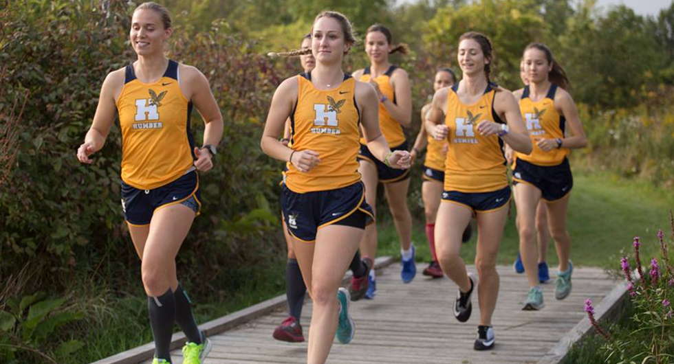 CROSS COUNTRY COMPETES AT SENECA; SHUVERA, VEENSTRA LEAD HAWKS