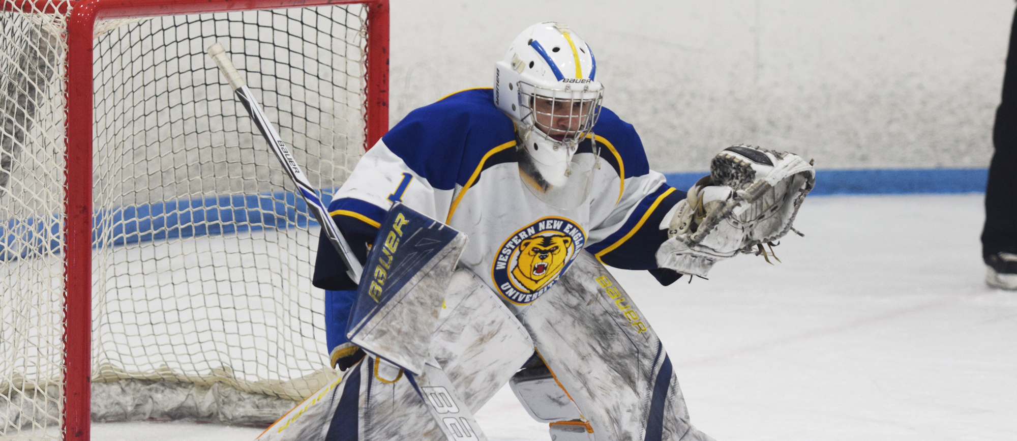 Kyle Carducci finished with 52 saves in Western New England's 4-3 win over Endicott on Saturday night. (Photo by Rachael Margossian)