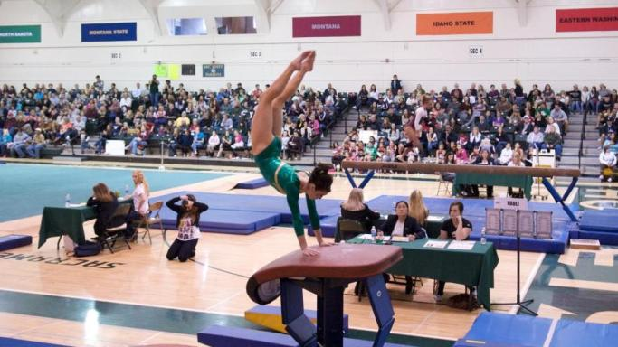 GYMNASTICS SCORES SEASON HIGH AT SOUTHERN UTAH
