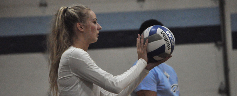 Sharks Sweep Women's Volleyball
