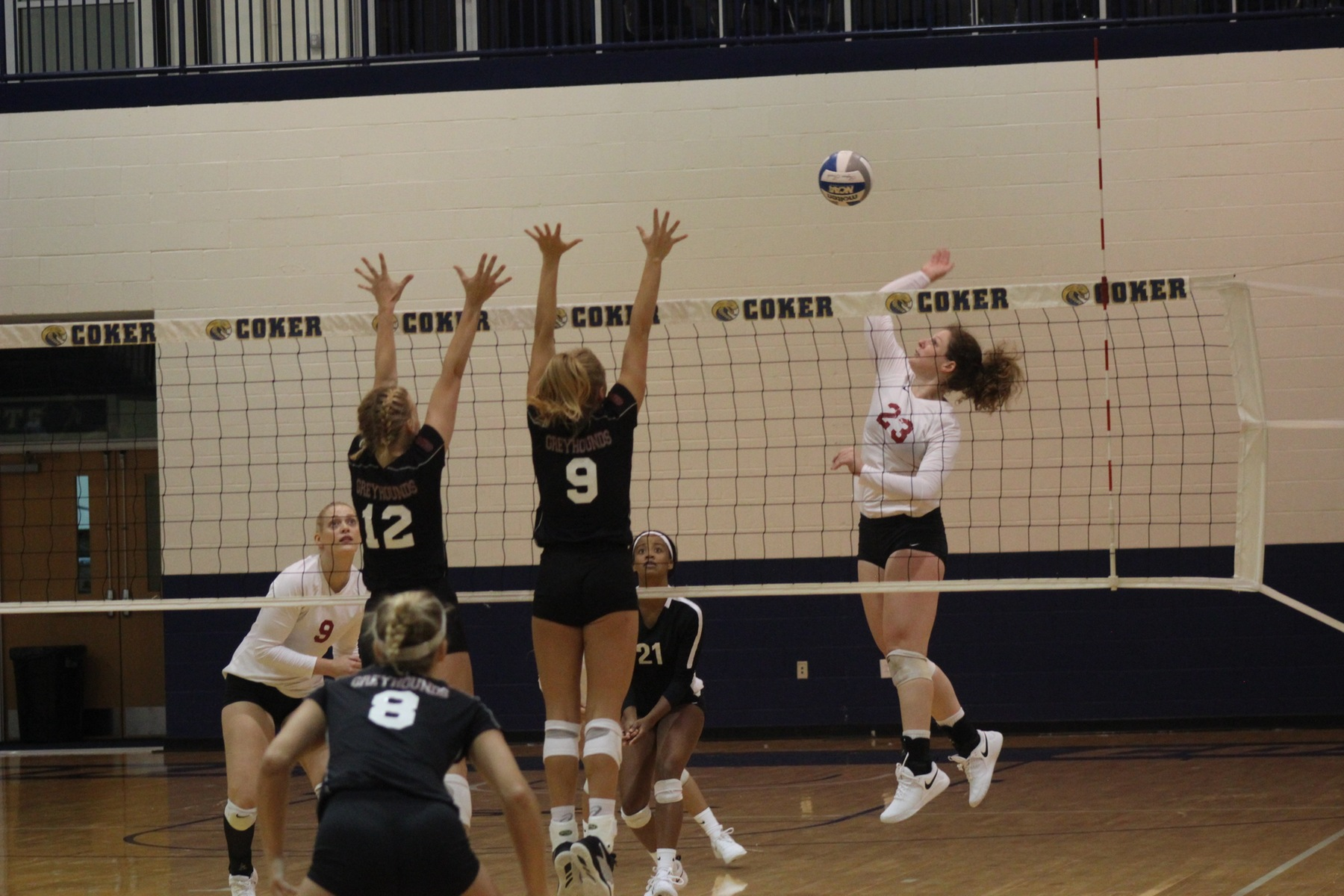 Lions Volleyball Claims Another Victory In First Conference Match