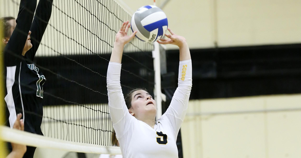 Women's Volleyball Outmatches Lasell 3-2
