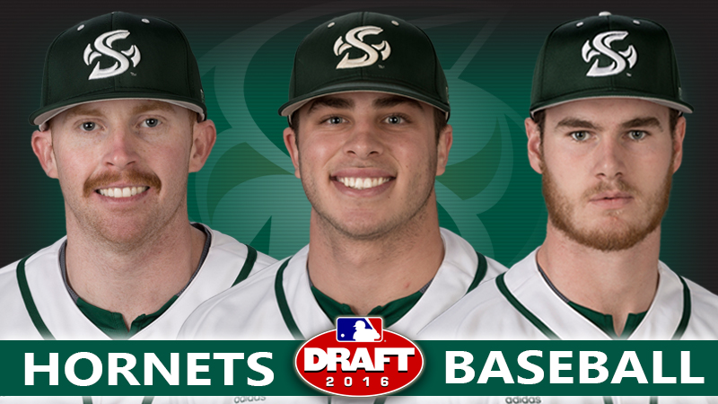 THREE HORNET BASEBALL PLAYERS SELECTED IN MLB DRAFT