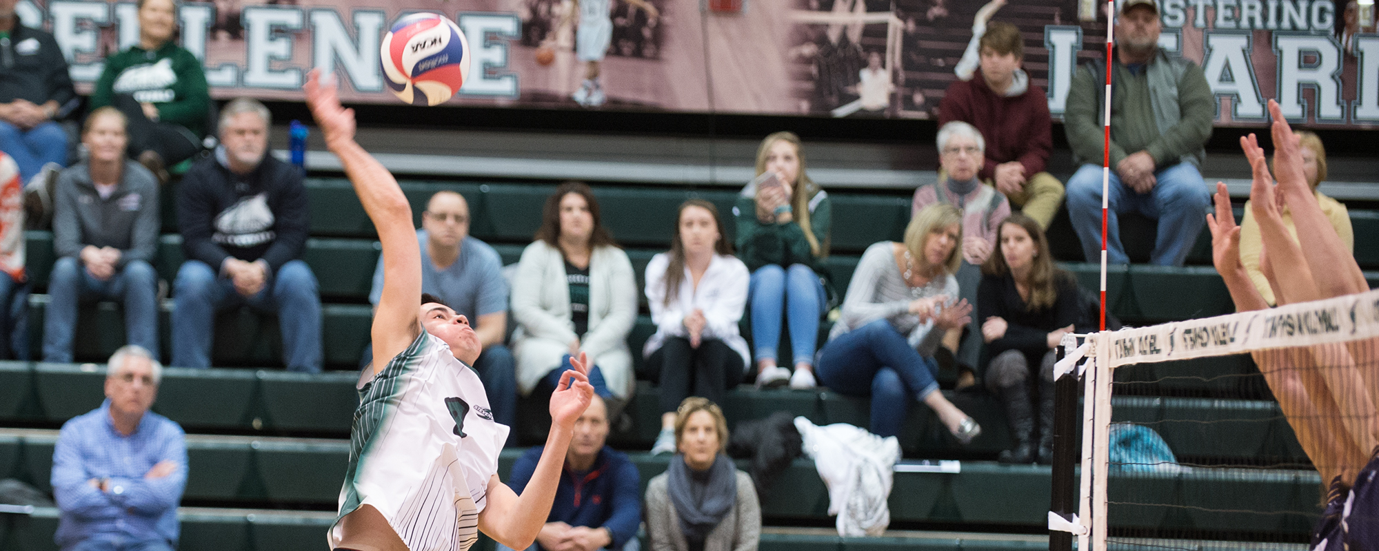Mustangs Topple Ivy League's Harvard At Morgan Classic