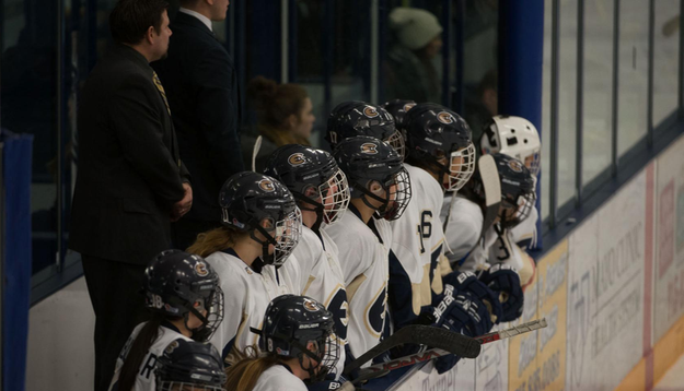 Blugolds skate past Wildcats to end 2016