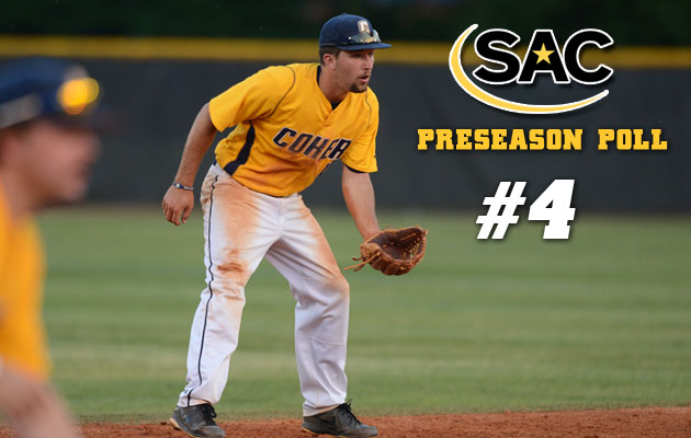 Baseball Picked Fourth in Preseason Poll