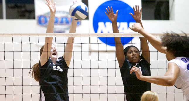 LC VB Splits Final Two Matches of Goucher Invite, All-Tourney Team Announced