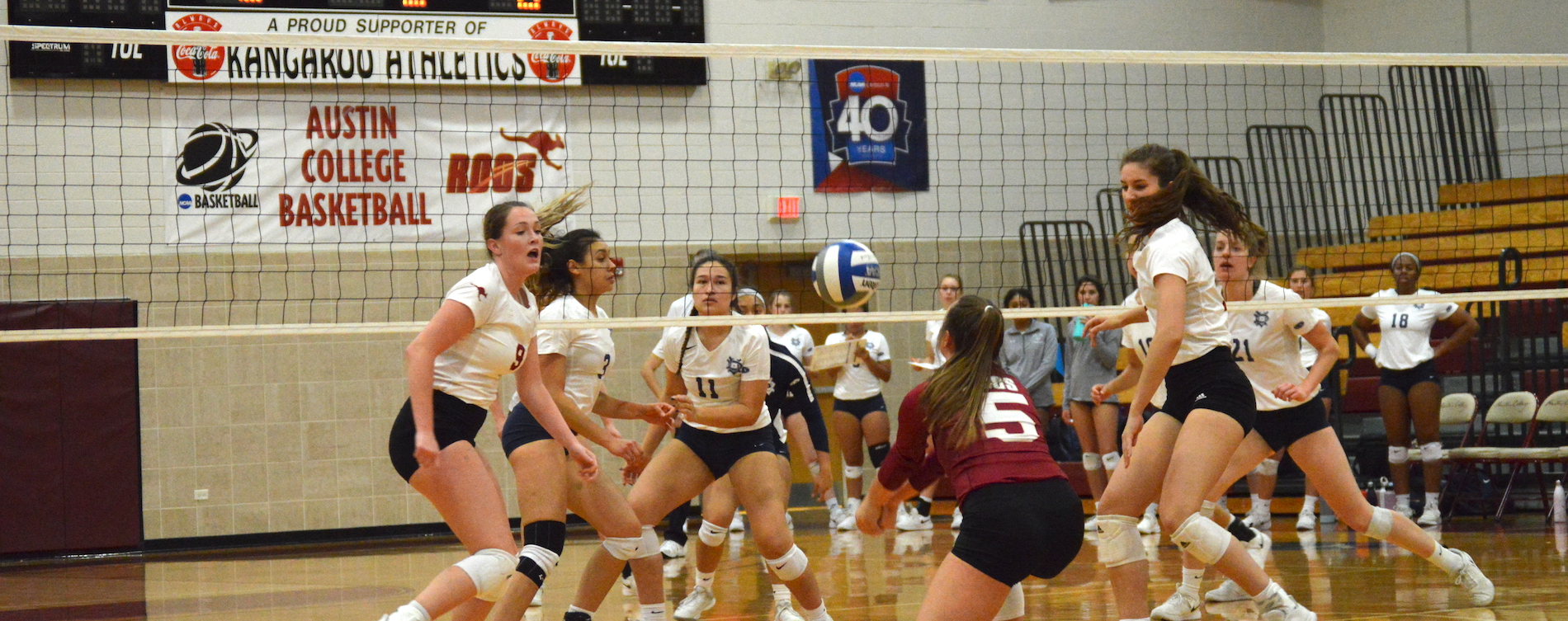 'Roo Volleyball Falls to Dallas