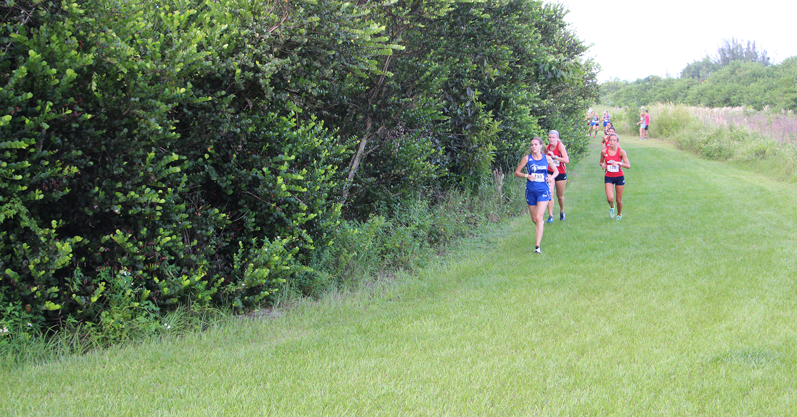 Cross Country Places in Tenth at the Florida Tech Invitational