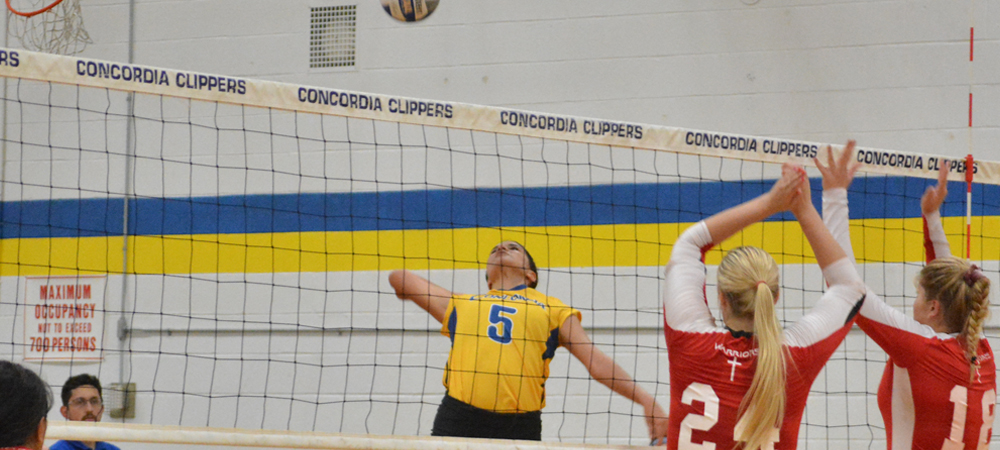 Clippers Set Career-Highs In Volleyball Loss To Nyack