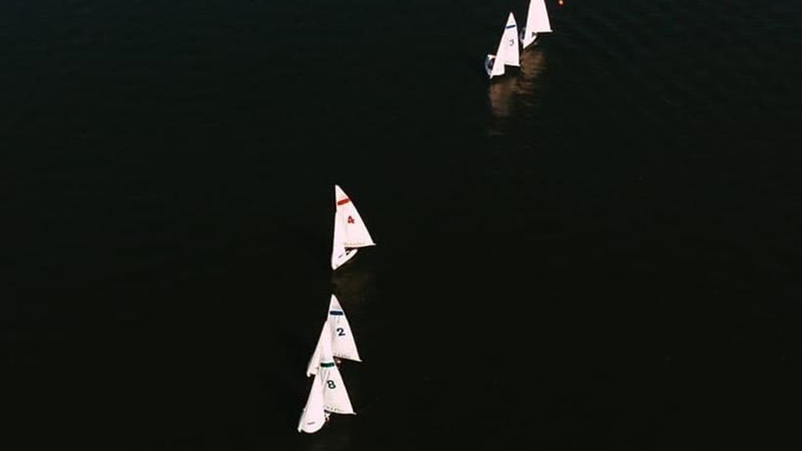 Rollins Sailing Wins Old South; Fourth in Texas