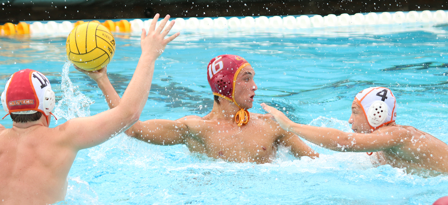 Home Sweet Home: Stags Take Two in Axelrood Pool