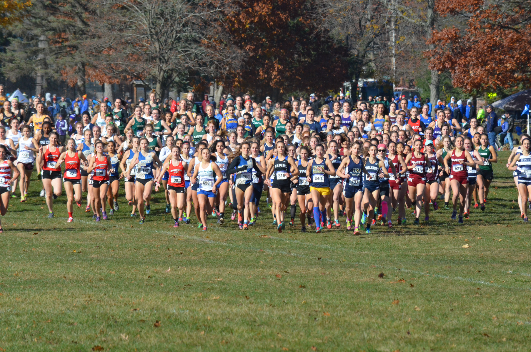 Women's Cross Country wraps up season at NCAA New England meet