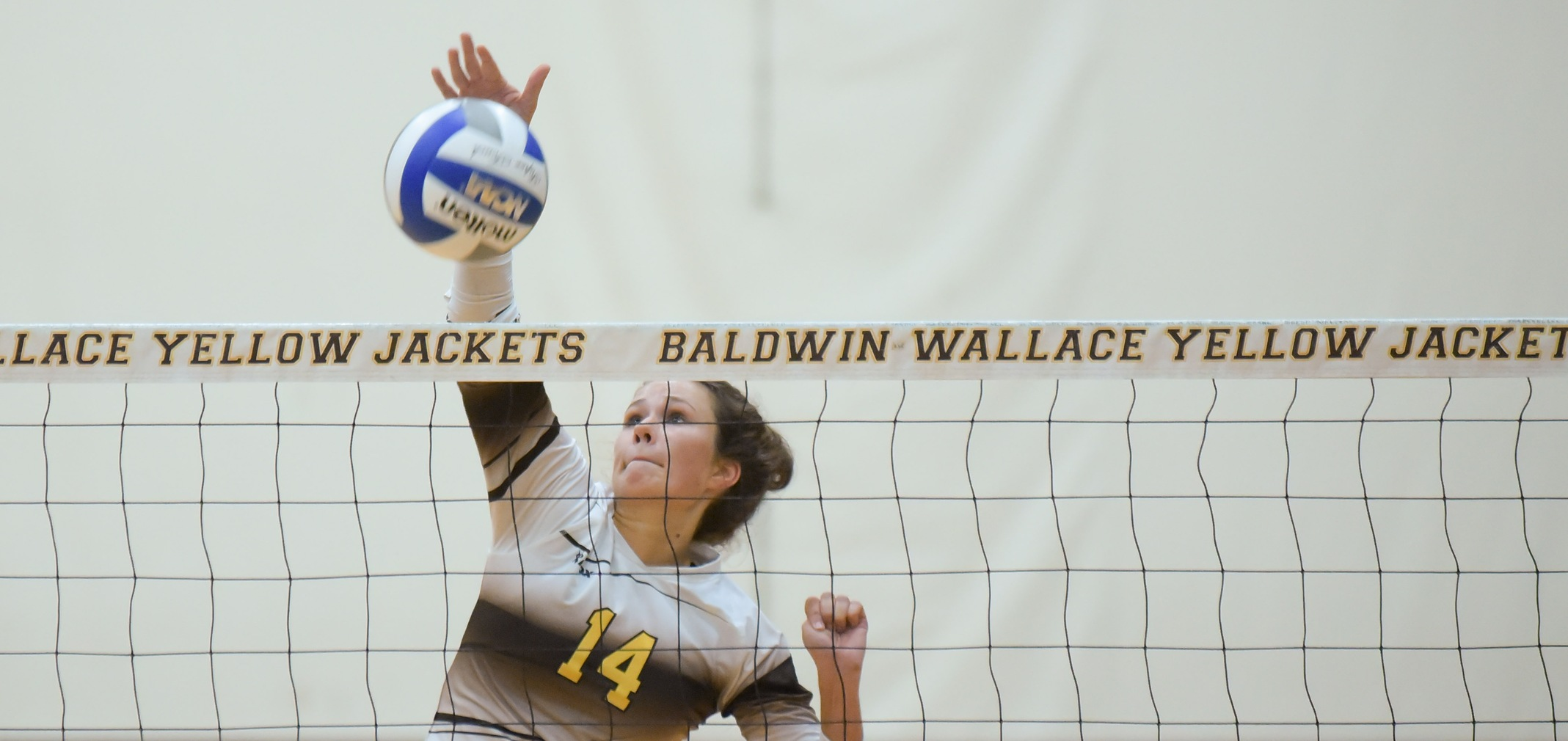 Volleyball Wins Three at Greyhound Premiere Invitational