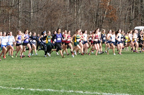 Lyndon women compete at ECAC Championship Meet