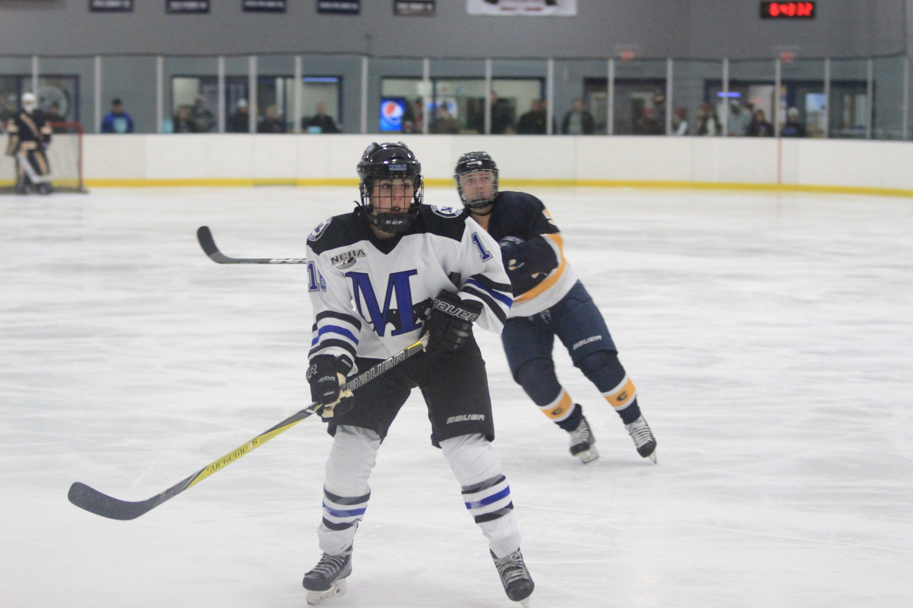 Marian tries to gain the puck.