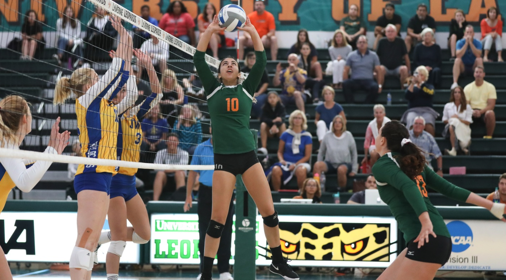 Volleyball sweeps Caltech at home