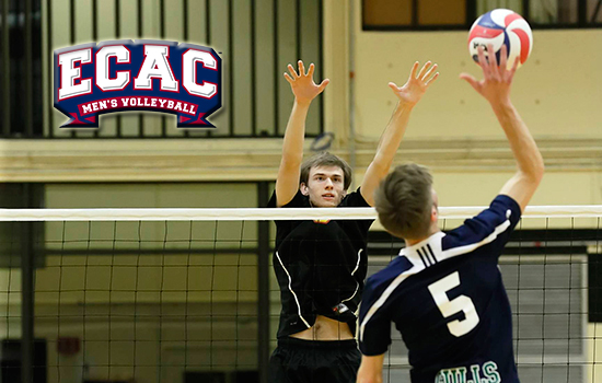 Potts Named ECAC Player of the Week