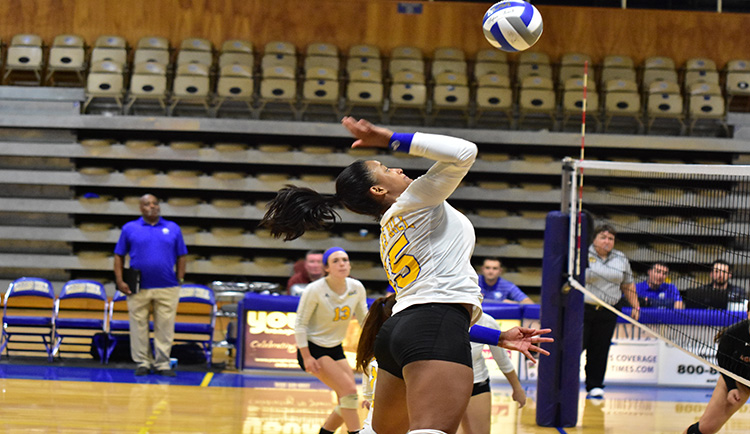 Barbosa leads Lions with 13 kills versus Lincoln Memorial