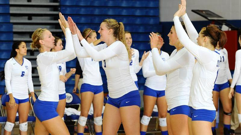 Volleyball Earns AVCA Honor