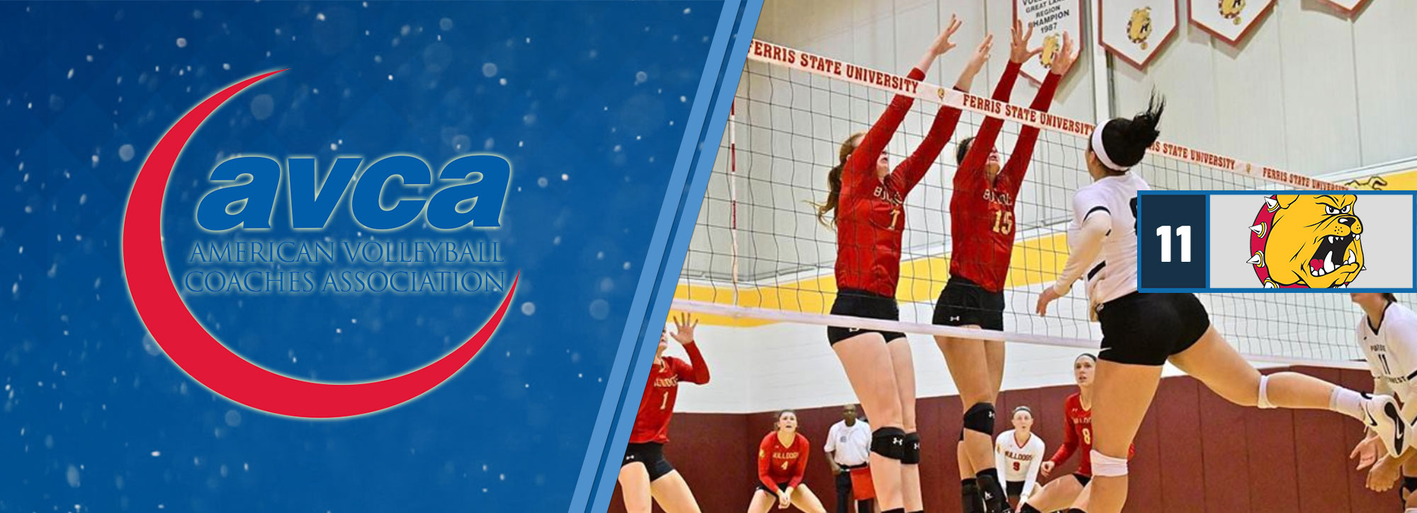 Ferris State Jumps to No. 11 in Latest AVCA Volleyball Rankings