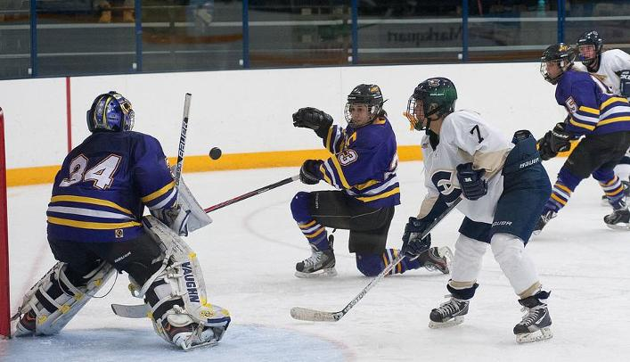 Women's Hockey Shutout on the Road Against Pointers