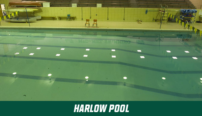 Gallery for Harlow Pool