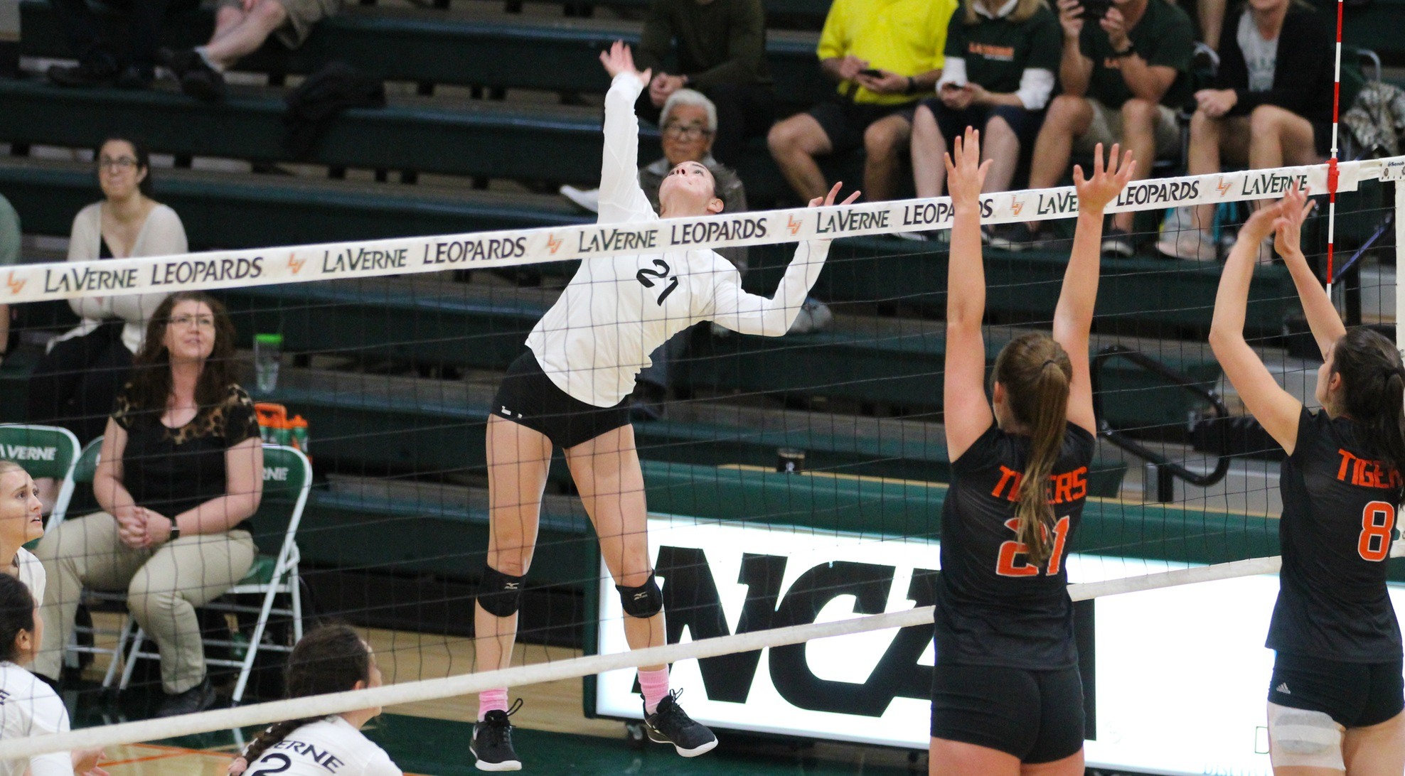 Volleyball sweeps Oxy, stays in hunt for postseason