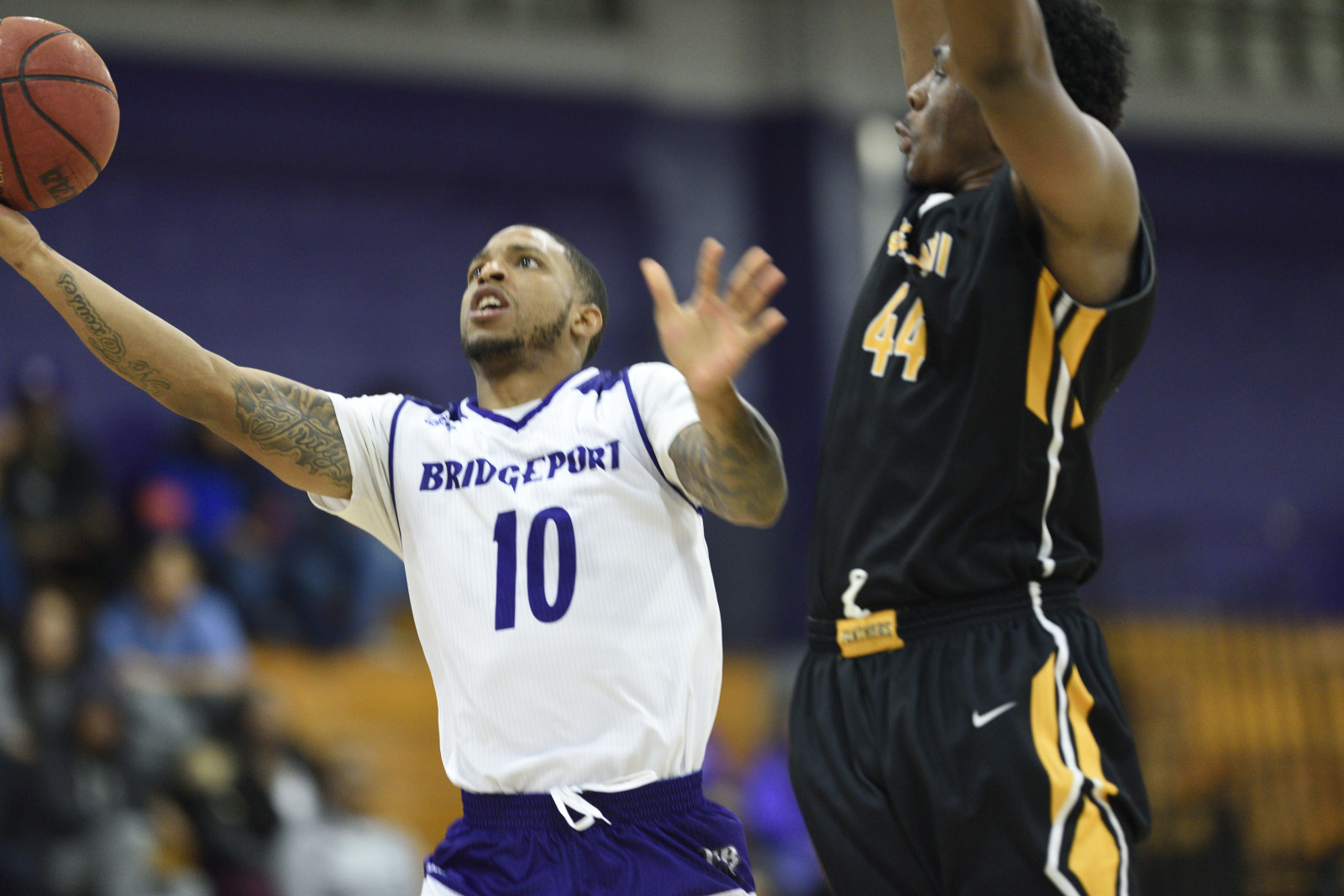 Purple Knights Ice Cold As Men's Basketball Falls At Home To Stonehill
