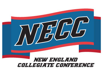NECC All-Conference Women's Volleyball Accolades