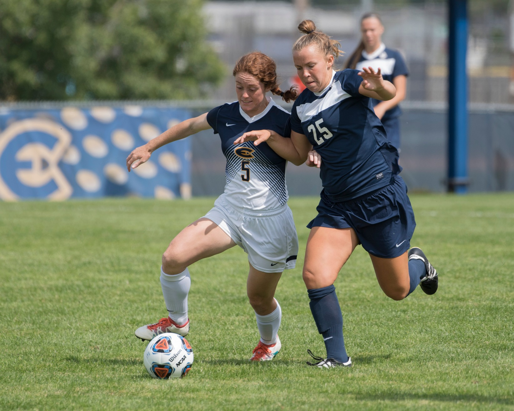 Blugolds draw with Pointers