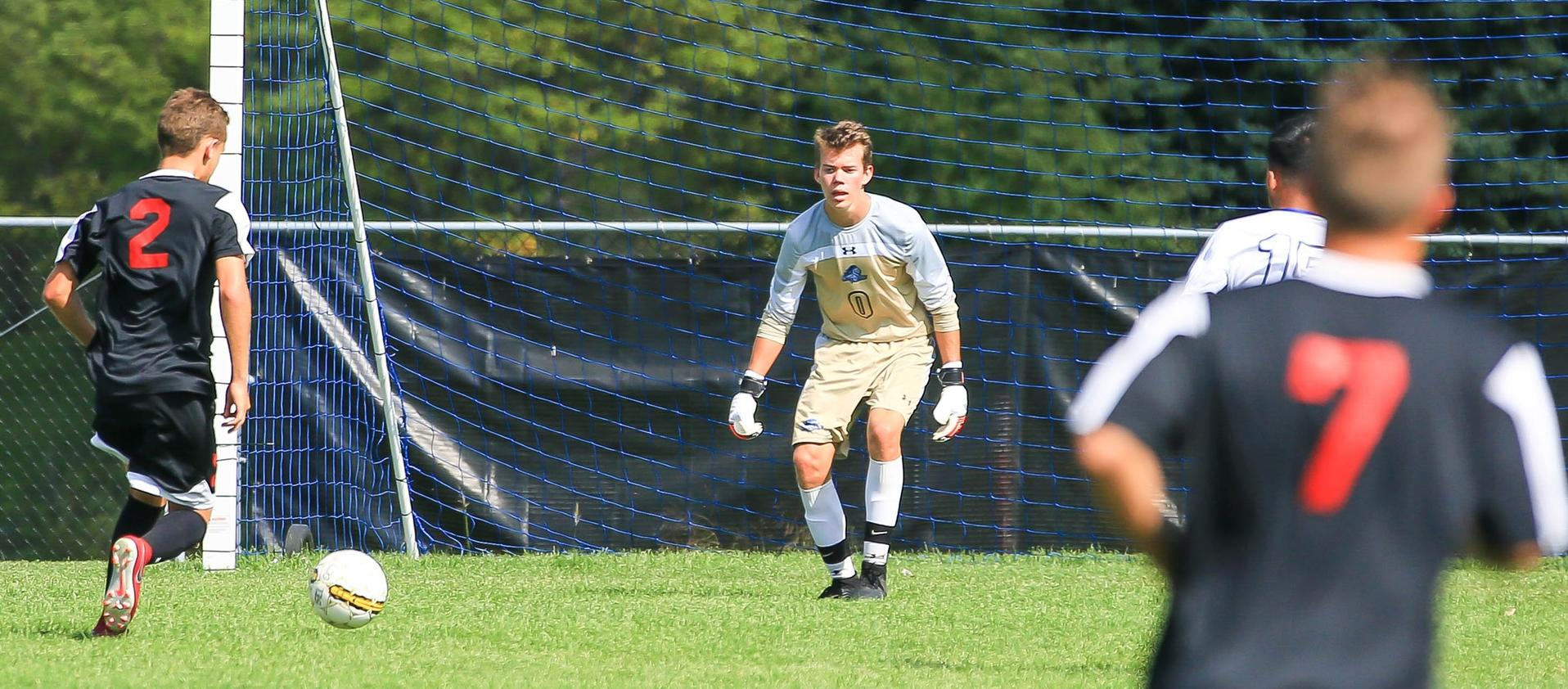 Men's soccer team finished the season with a 8-11 record.
