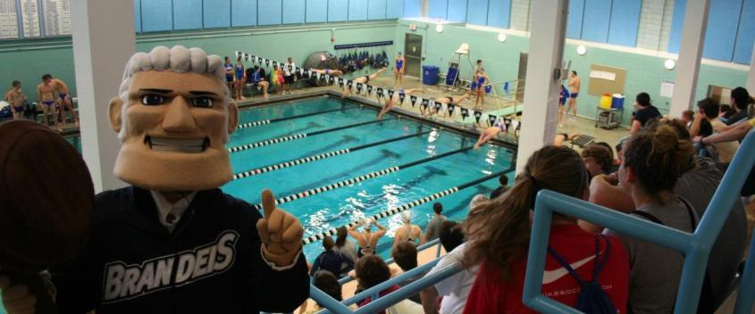 Louie The Judge cheers on the swim team at their meet vs. Wheaton College!