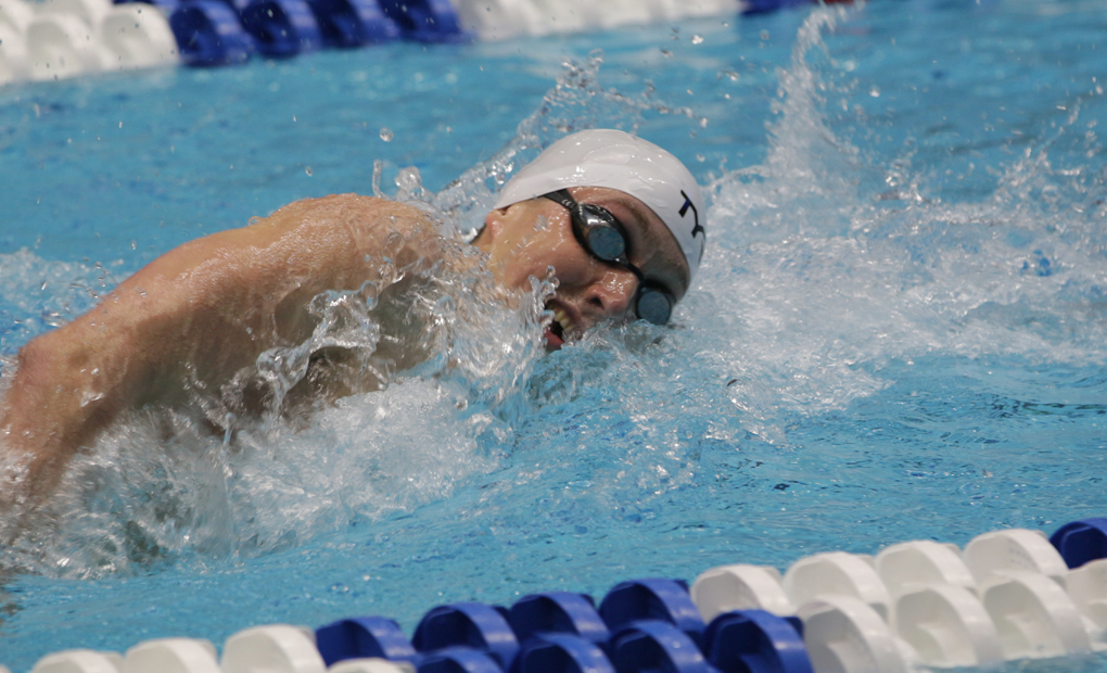 Men's Swimming & Diving Win Three Events, Set One DIII Record on Day One of NCAAs