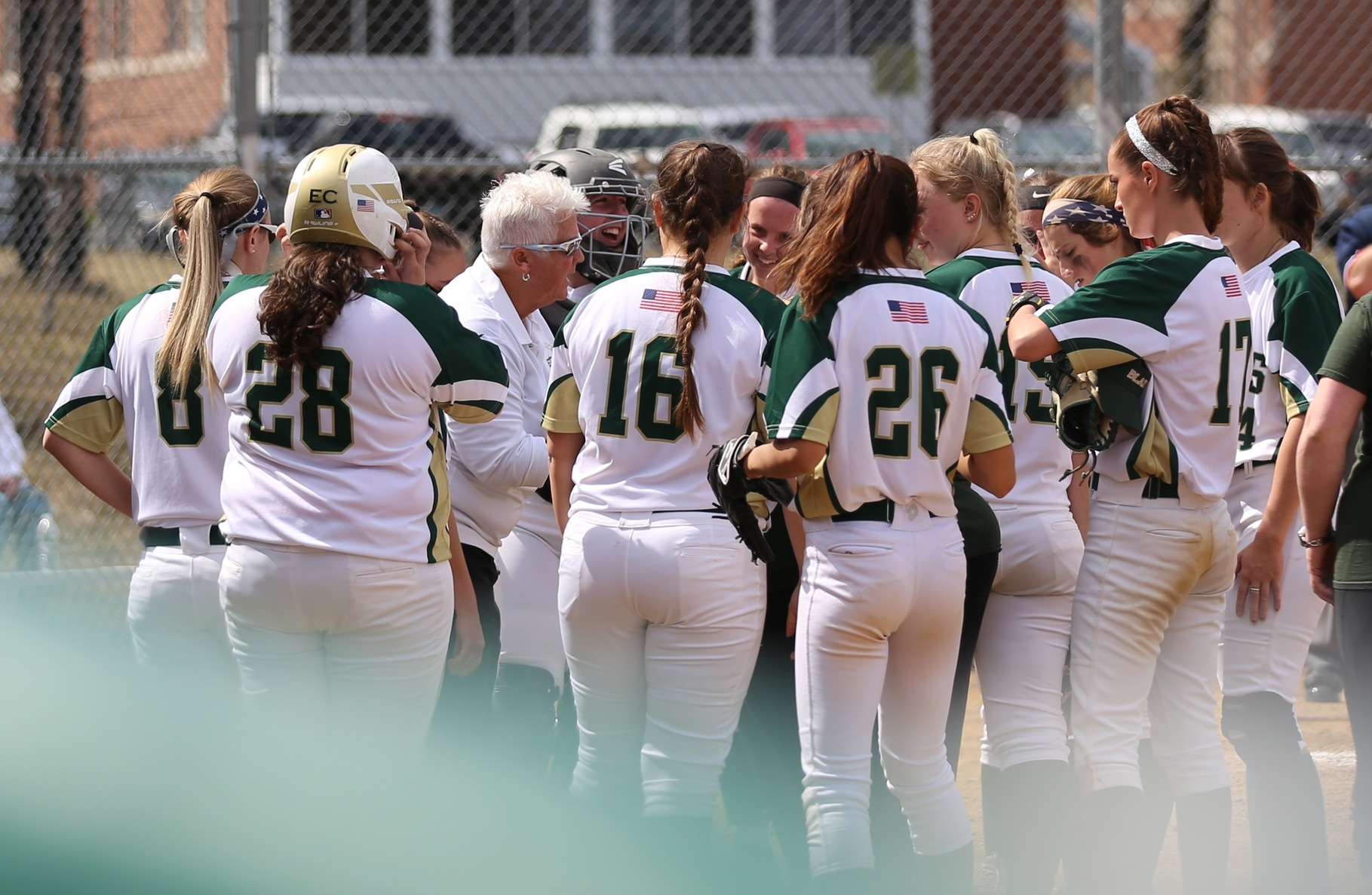 Softball Drops Two At New England College