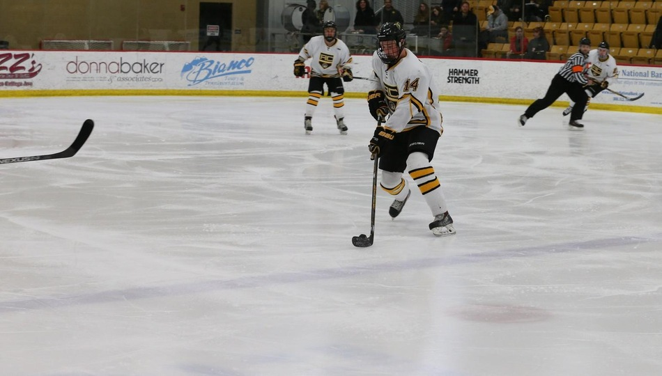 Sophomore Rainer Glimpel scored in Adrian's 8-1 thrashing of Kent State Friday. (Action photo by Mike Dickie)