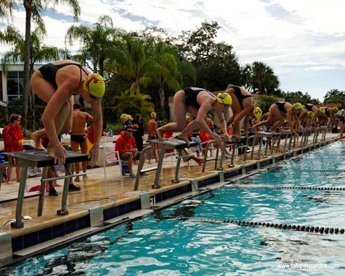 Tampa Continues To Hold National Swimming Ranking University Of Tampa Athletics