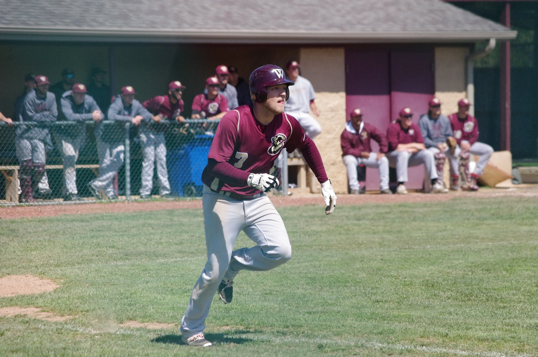 Walsh Splits With Wayne State On Senior Day