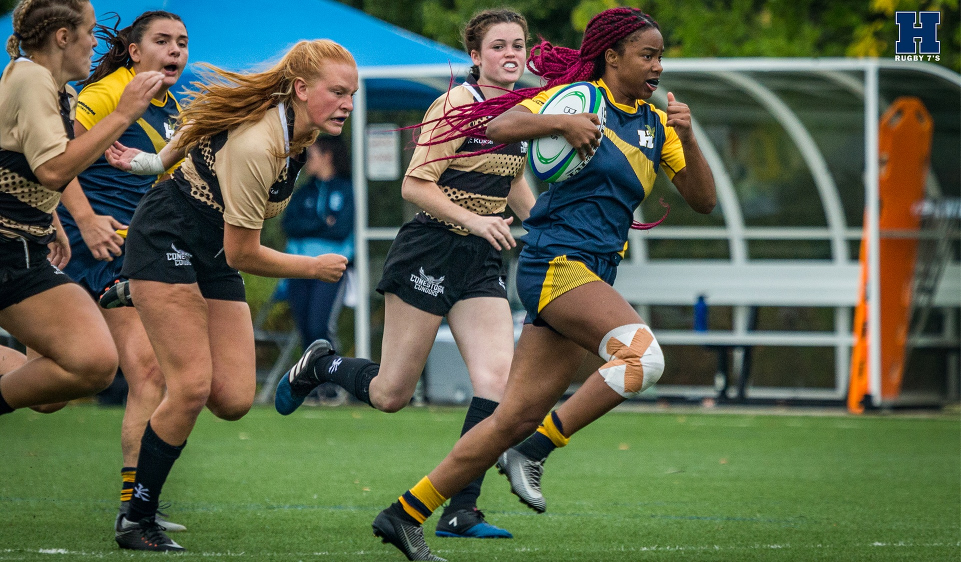 Another Tournament Sweep for Rugby Sevens