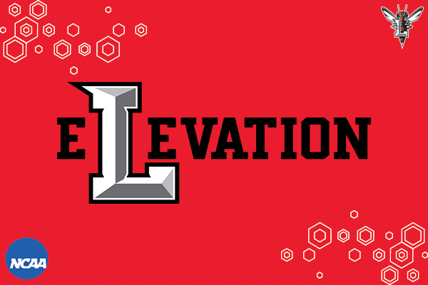 Elevation logo on red background with honeycomb effect.