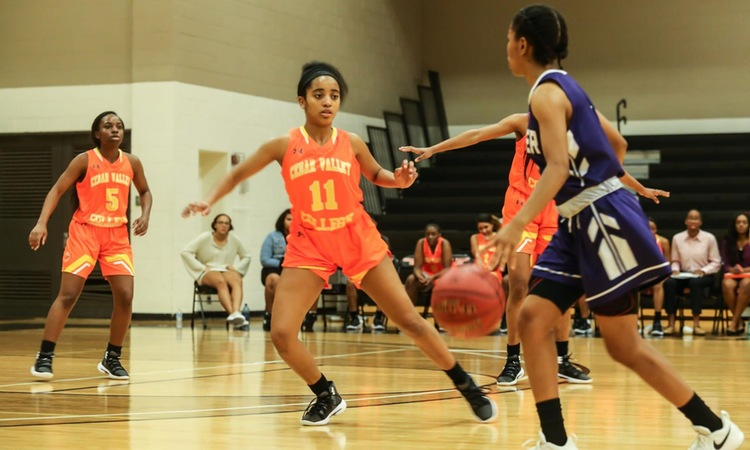 Women's Basketball Swept in Series by LSU-Eunice