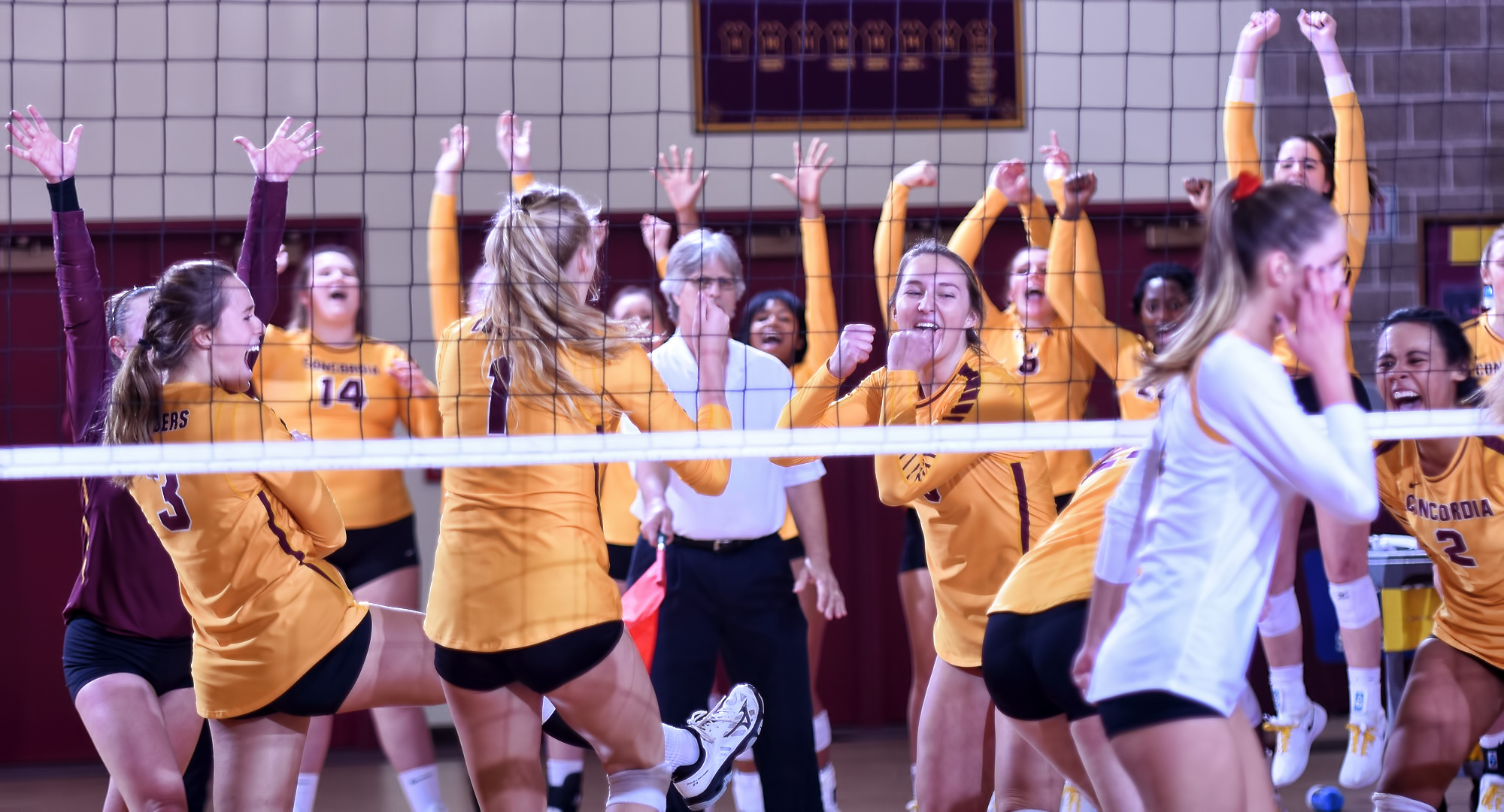 Concordia celebrates set point in the second set during their 3-1 win over Gustavus.