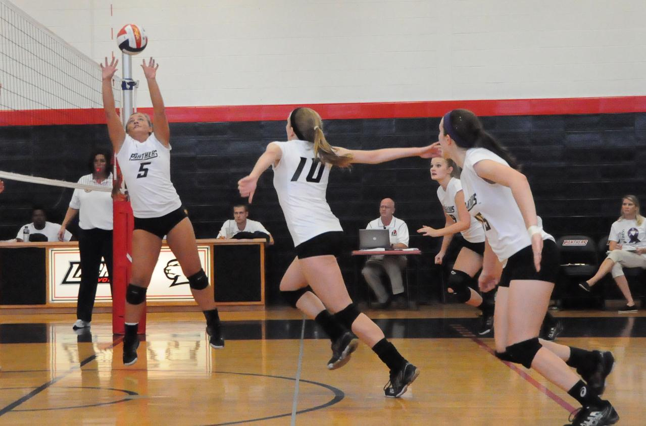 Volleyball: Piedmont turns back Panthers in USA South match