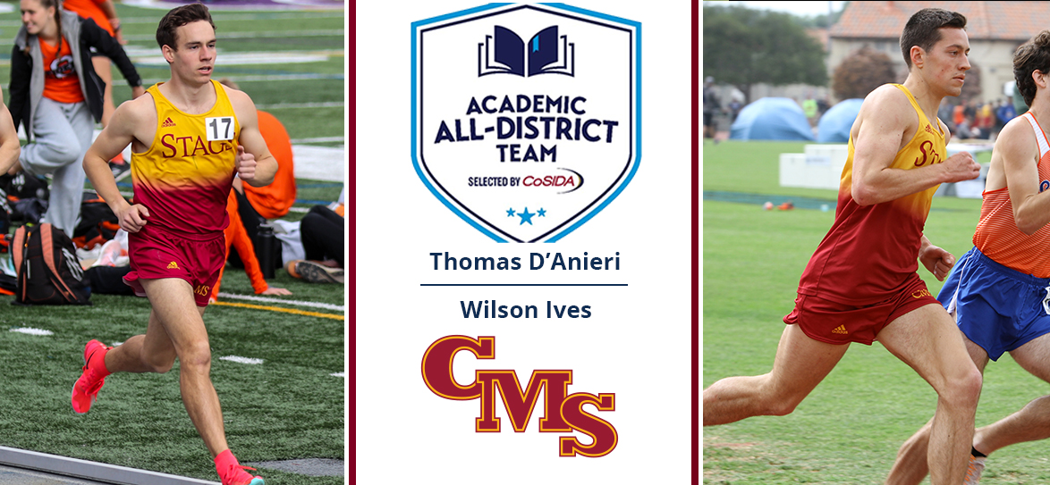 Thomas D'Anieri, Wilson Ives Earn Academic All-District Honors