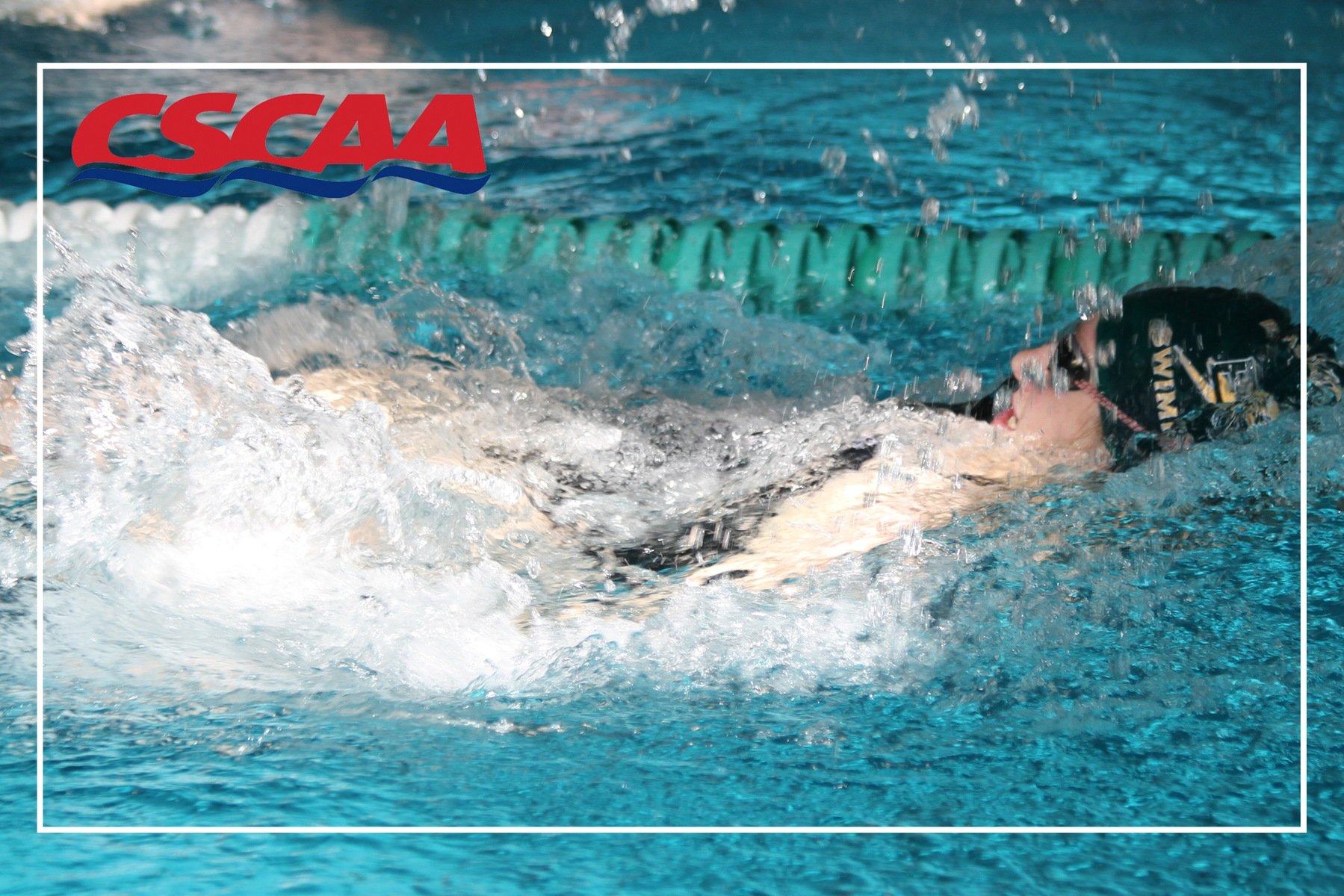 Blazer Swimming Earns Spot On CSCAA Scholar All-America List